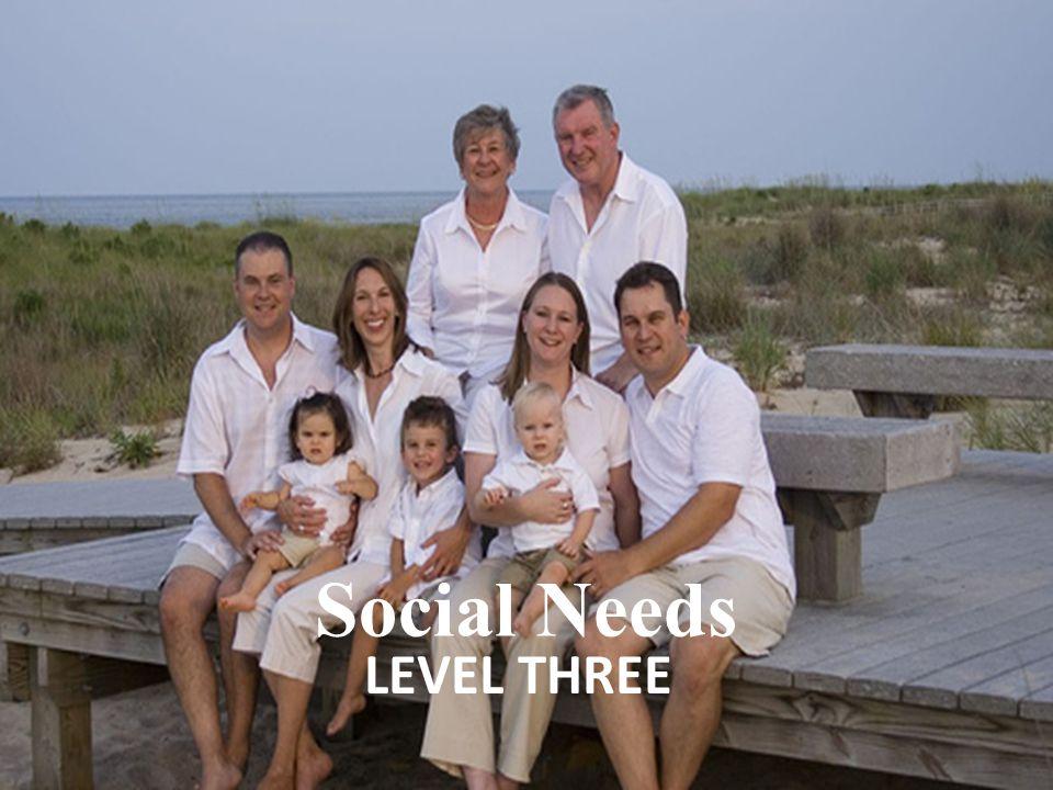 LEVEL THREE Social Needs