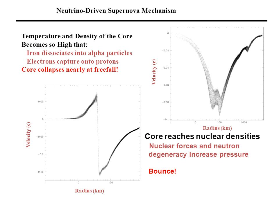 Neutrino-Driven Supernova Mechanism Temperature and Density of the Core Becomes so High that: Iron dissociates into alpha particles Electrons capture onto protons Core collapses nearly at freefall.
