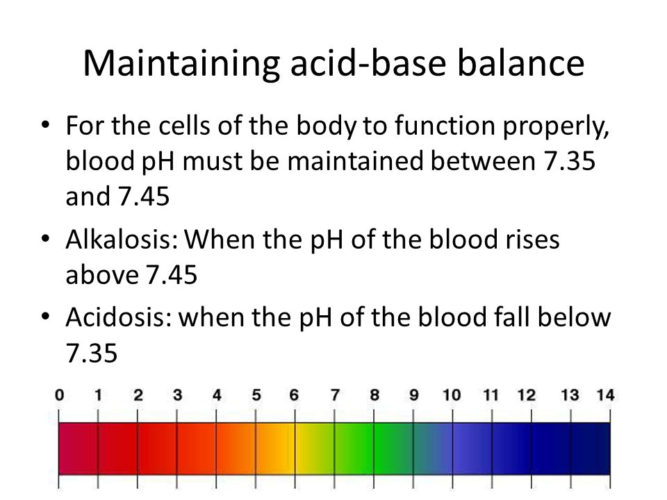 Maintaining acid-base balance For the cells of the body to function properly, blood pH must be maintained between 7.35 and 7.45 Alkalosis: When the pH of the blood rises above 7.45 Acidosis: when the pH of the blood fall below 7.35