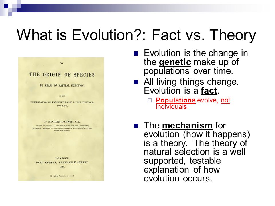 the debate about how evolution occurred and proof of evolution Who 'won' the creation vs evolution debate : the two-way days after a wide-ranging debate on creationism and evolution between bill nye and ken ham, the topic is driving an online conversation about points raised in the debate.
