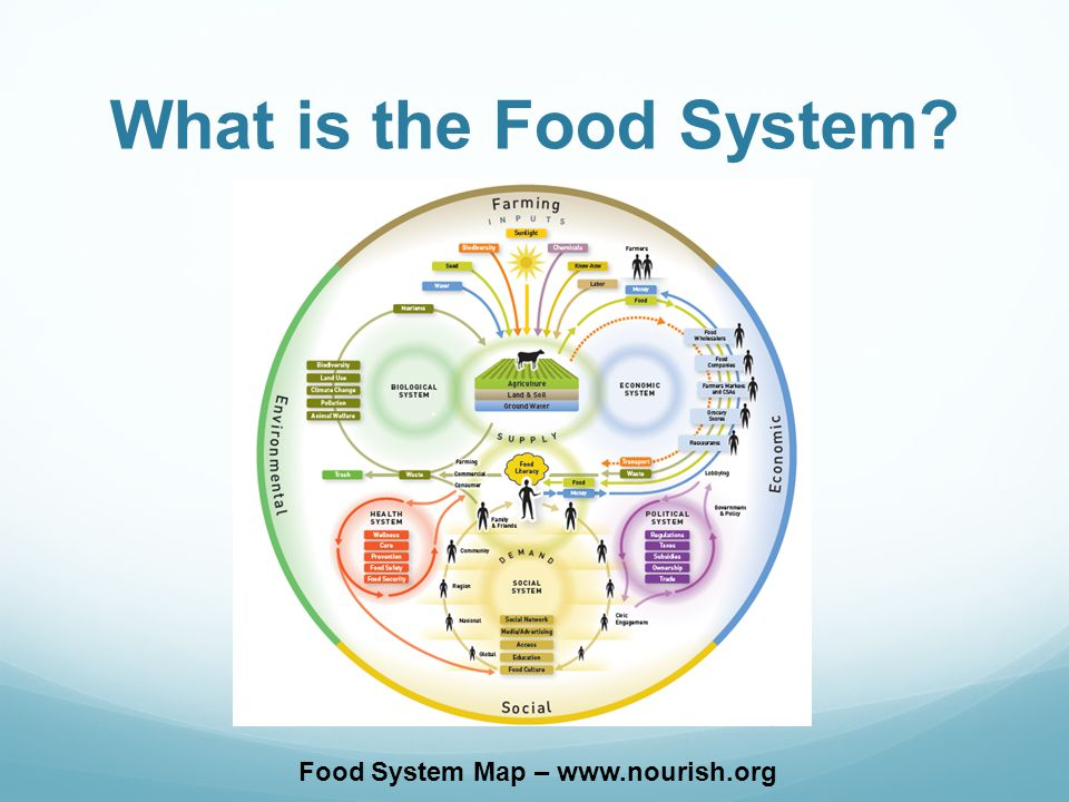 What is the Food System Food System Map –