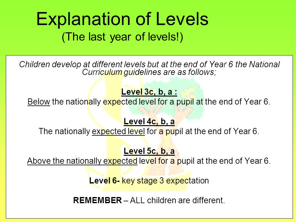 Explanation of Levels (The last year of levels!) Children develop at different levels but at the end of Year 6 the National Curriculum guidelines are as follows; Level 3c, b, a : Below the nationally expected level for a pupil at the end of Year 6.