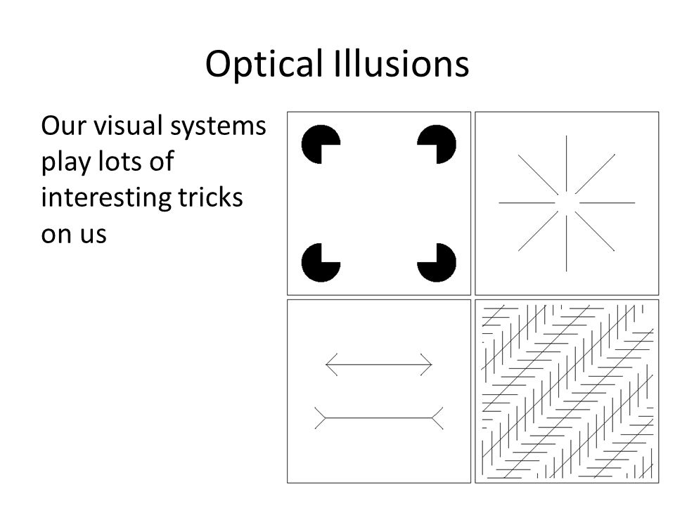 Optical Illusions Our visual systems play lots of interesting tricks on us