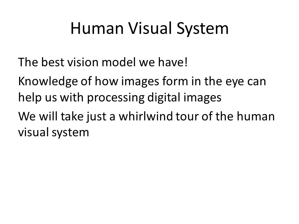Human Visual System The best vision model we have.
