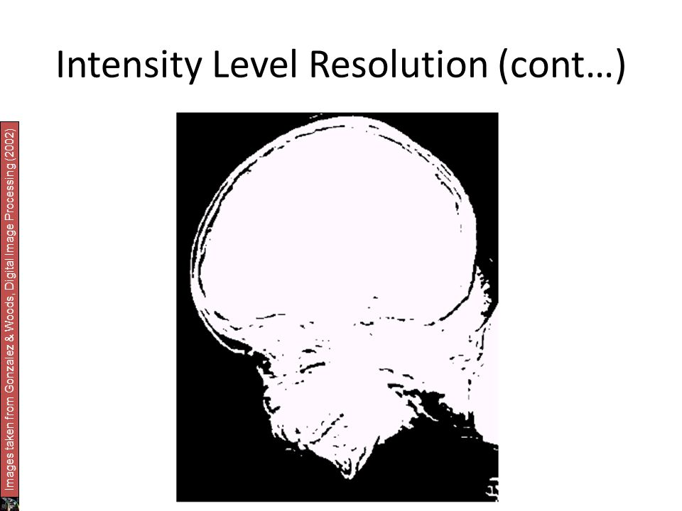 Intensity Level Resolution (cont…) Images taken from Gonzalez & Woods, Digital Image Processing (2002)