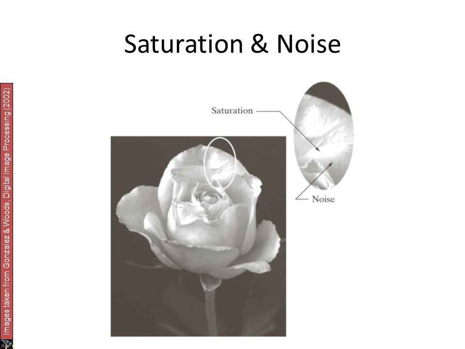 Saturation & Noise Images taken from Gonzalez & Woods, Digital Image Processing (2002)