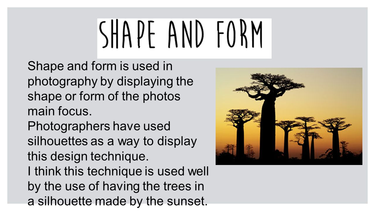 Shape and form is used in photography by displaying the shape or form of the photos main focus.