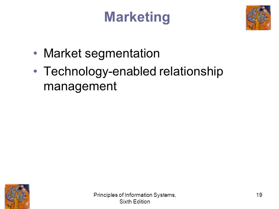 Principles of Information Systems, Sixth Edition 19 Marketing Market segmentation Technology-enabled relationship management