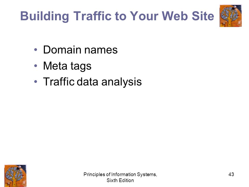 Principles of Information Systems, Sixth Edition 43 Building Traffic to Your Web Site Domain names Meta tags Traffic data analysis