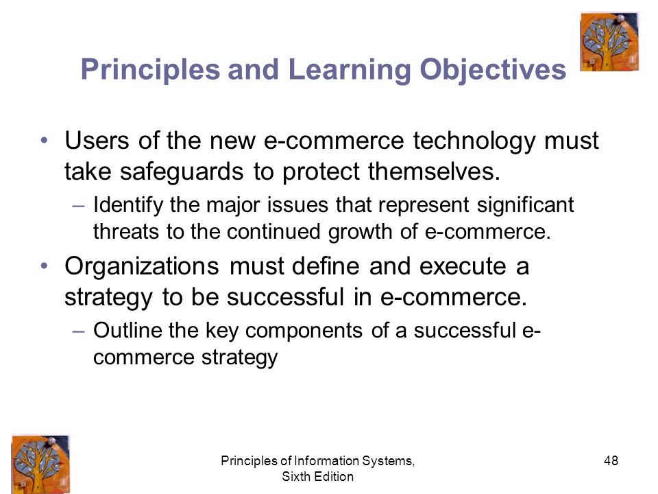 Principles of Information Systems, Sixth Edition 48 Principles and Learning Objectives Users of the new e-commerce technology must take safeguards to protect themselves.