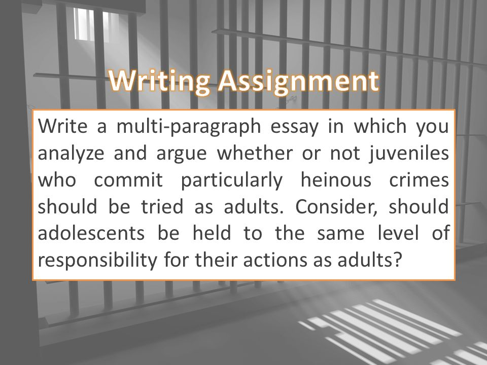 Whats the difference between essay and a multi-paragraph?