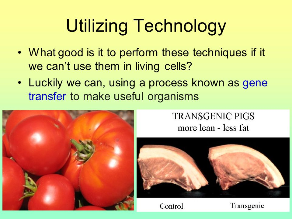 Utilizing Technology What good is it to perform these techniques if it we can't use them in living cells.