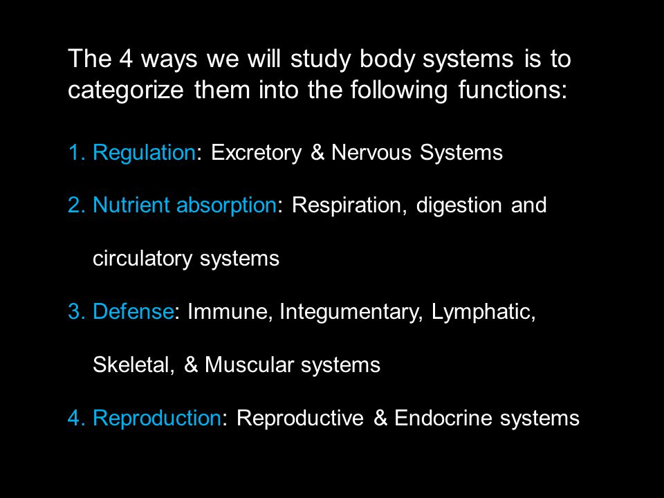 The 4 ways we will study body systems is to categorize them into the following functions: 1.Regulation: Excretory & Nervous Systems 2.Nutrient absorption: Respiration, digestion and circulatory systems 3.Defense: Immune, Integumentary, Lymphatic, Skeletal, & Muscular systems 4.Reproduction: Reproductive & Endocrine systems
