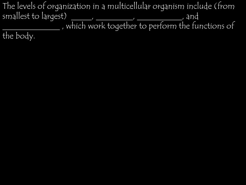 The levels of organization in a multicellular organism include (from smallest to largest) _____, _________, ___________, and ______________, which work together to perform the functions of the body.