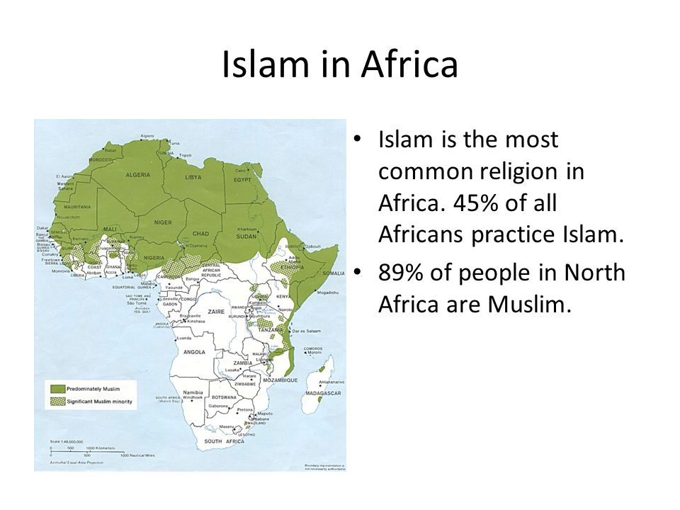 Islam in Africa Islam is the most common religion in Africa.