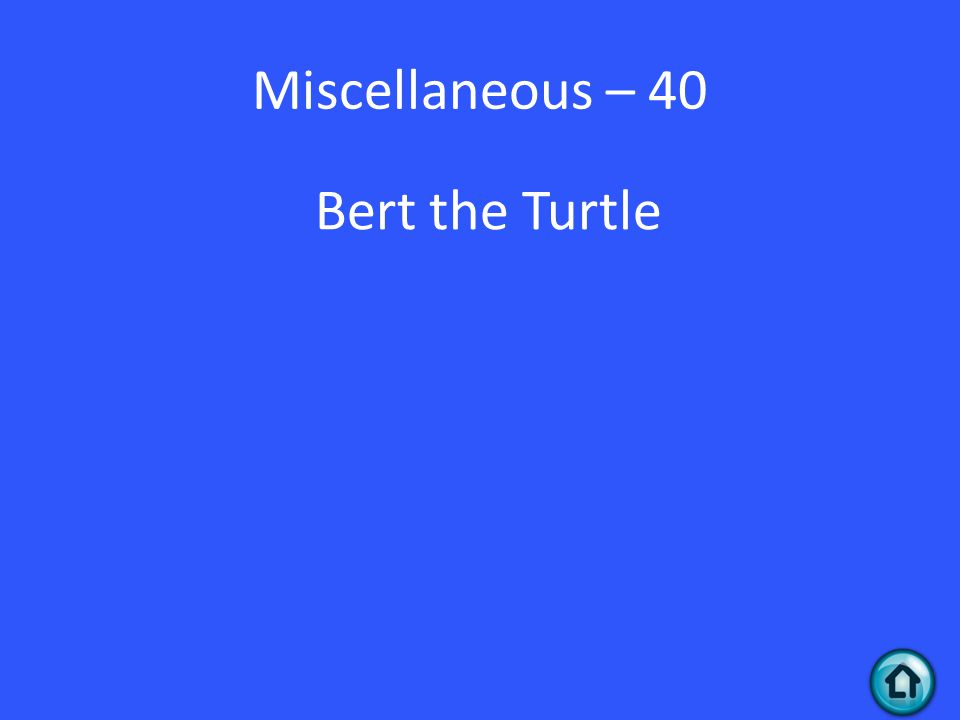 Miscellaneous – 40 Bert the Turtle