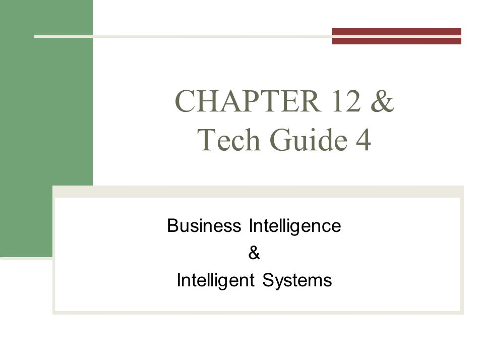 CHAPTER 12 & Tech Guide 4 Business Intelligence & Intelligent Systems