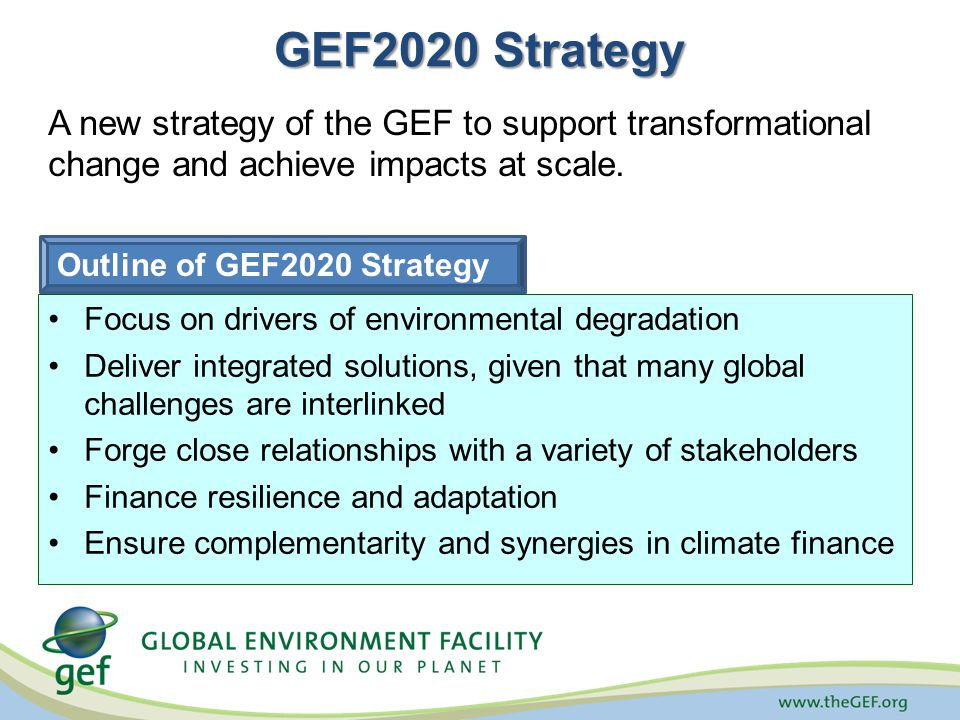 GEF2020 Strategy A new strategy of the GEF to support transformational change and achieve impacts at scale.