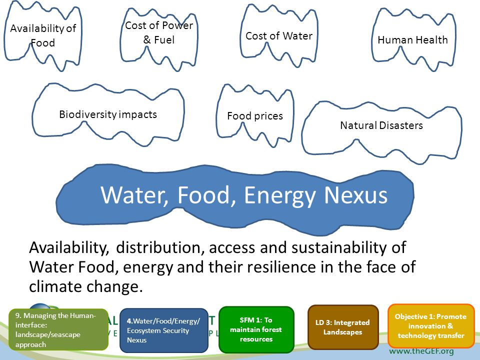 Water, Food, Energy Nexus Availability, distribution, access and sustainability of Water Food, energy and their resilience in the face of climate change.
