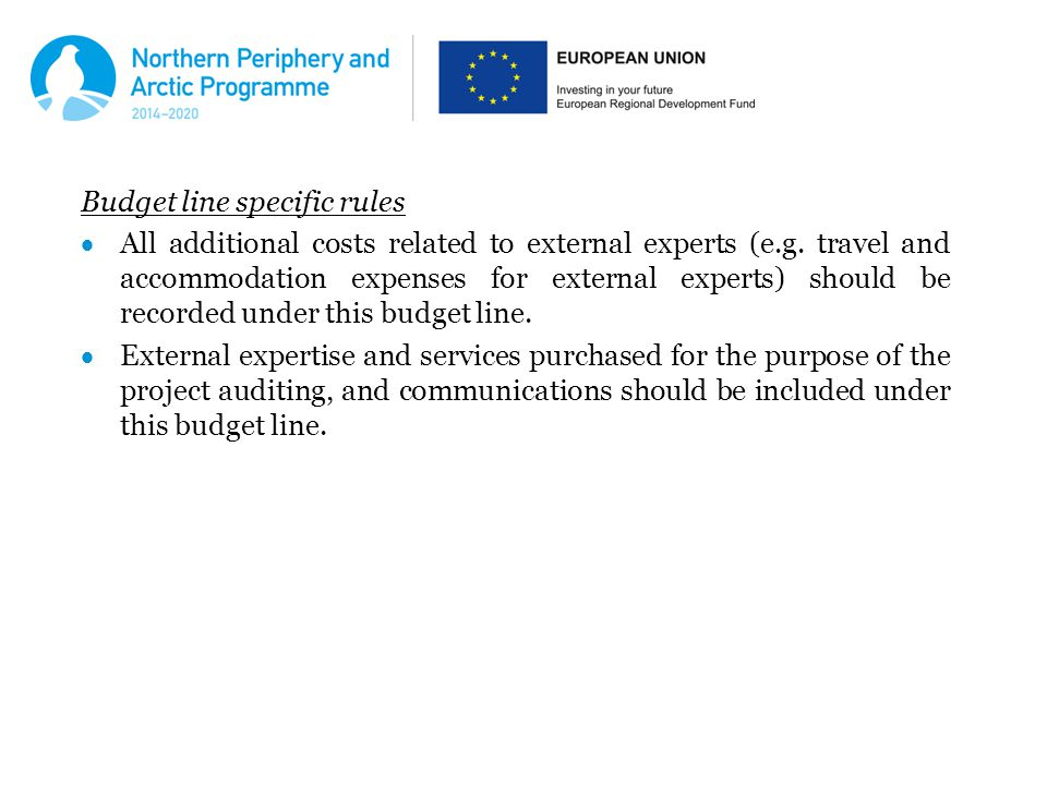 Budget line specific rules  All additional costs related to external experts (e.g.