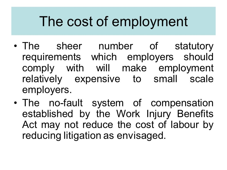 The cost of employment The sheer number of statutory requirements which employers should comply with will make employment relatively expensive to small scale employers.