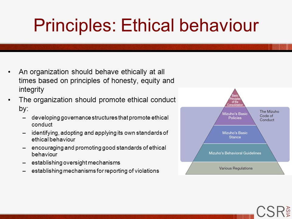 Principles: Ethical behaviour An organization should behave ethically at all times based on principles of honesty, equity and integrity The organization should promote ethical conduct by: –developing governance structures that promote ethical conduct –identifying, adopting and applying its own standards of ethical behaviour –encouraging and promoting good standards of ethical behaviour –establishing oversight mechanisms –establishing mechanisms for reporting of violations