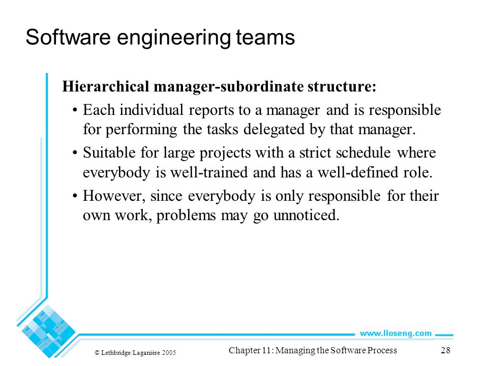 © Lethbridge/Laganière 2005 Chapter 11: Managing the Software Process28 Software engineering teams Hierarchical manager-subordinate structure: Each individual reports to a manager and is responsible for performing the tasks delegated by that manager.