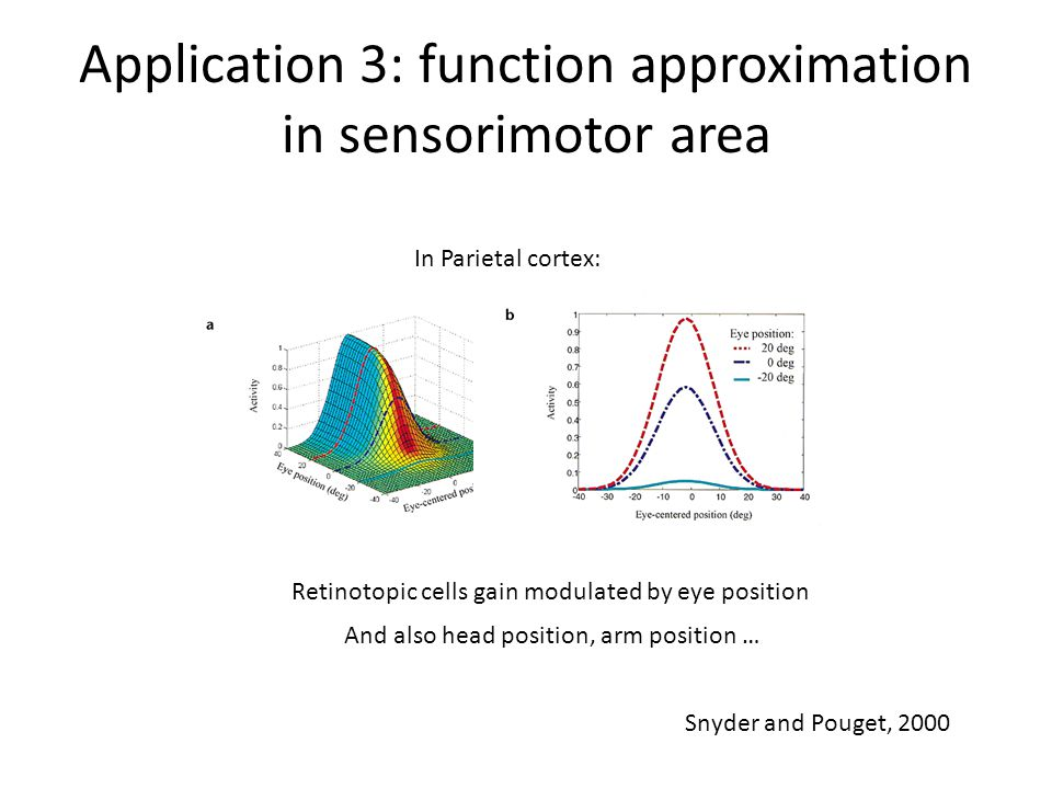 Application 3: function approximation in sensorimotor area In Parietal cortex: Retinotopic cells gain modulated by eye position And also head position, arm position … Snyder and Pouget, 2000