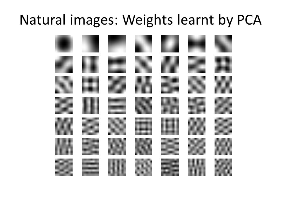 Natural images: Weights learnt by PCA