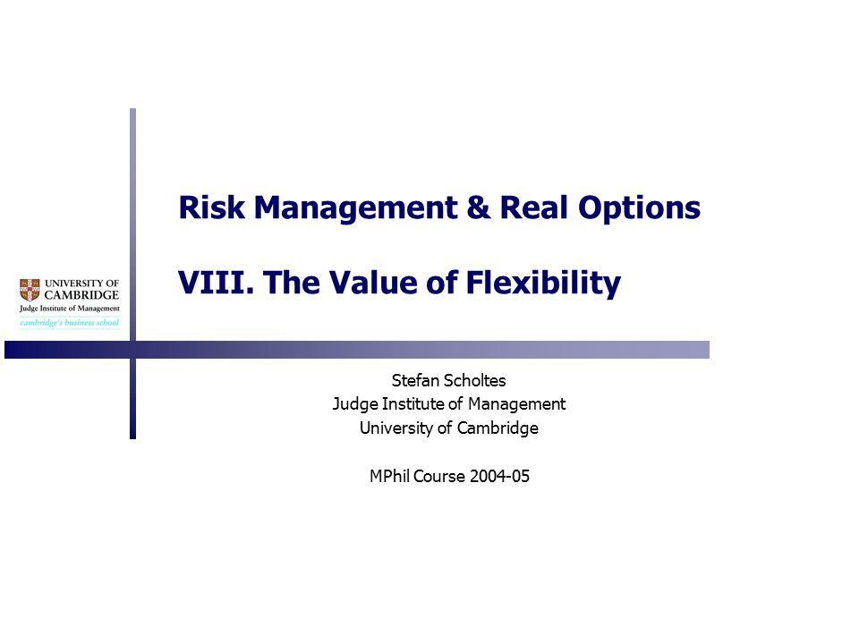 Risk Management & Real Options VIII.
