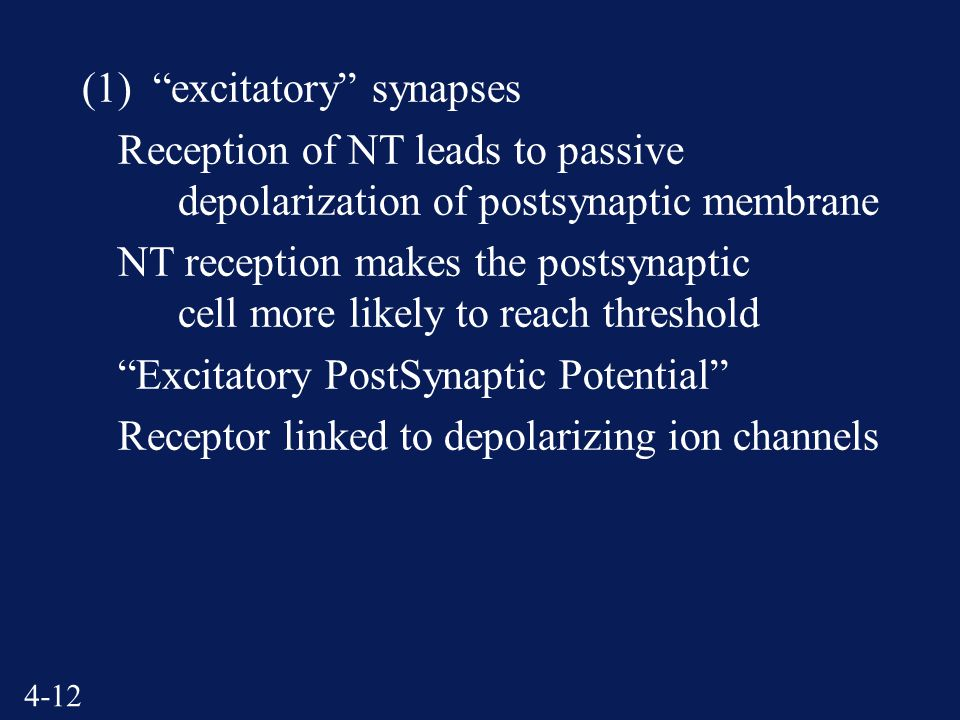 4-12 (1) excitatory synapses Reception of NT leads to passive depolarization of postsynaptic membrane NT reception makes the postsynaptic cell more likely to reach threshold Excitatory PostSynaptic Potential Receptor linked to depolarizing ion channels