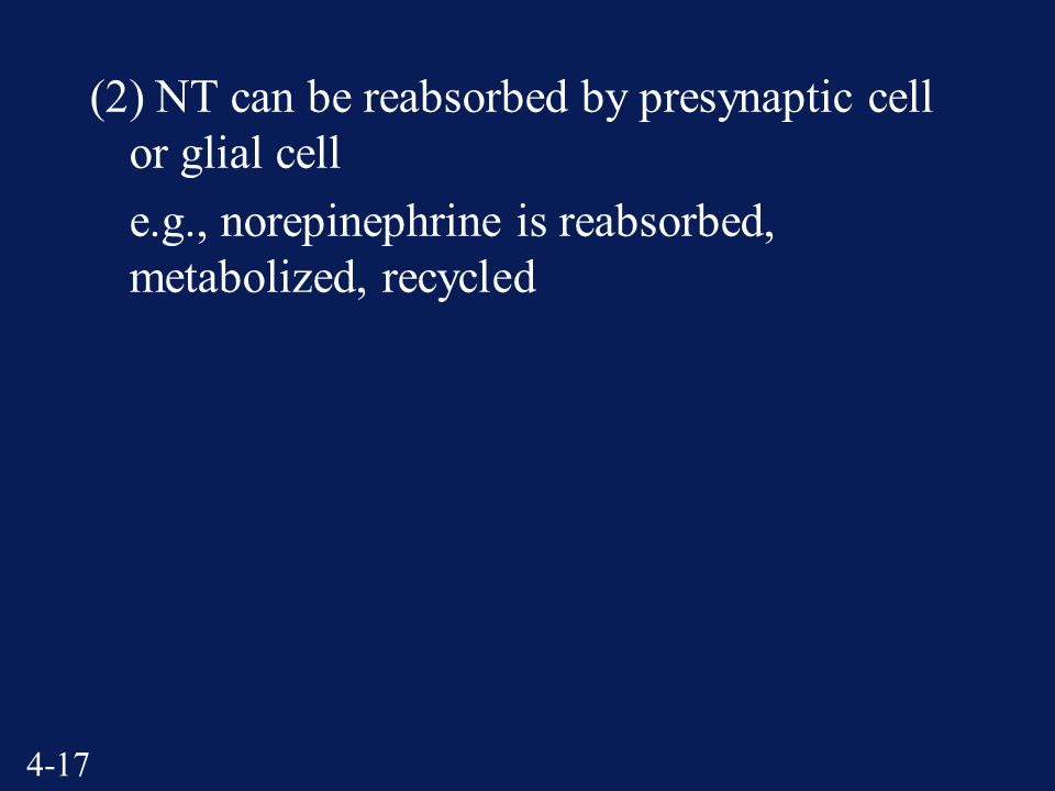 4-17 (2) NT can be reabsorbed by presynaptic cell or glial cell e.g., norepinephrine is reabsorbed, metabolized, recycled
