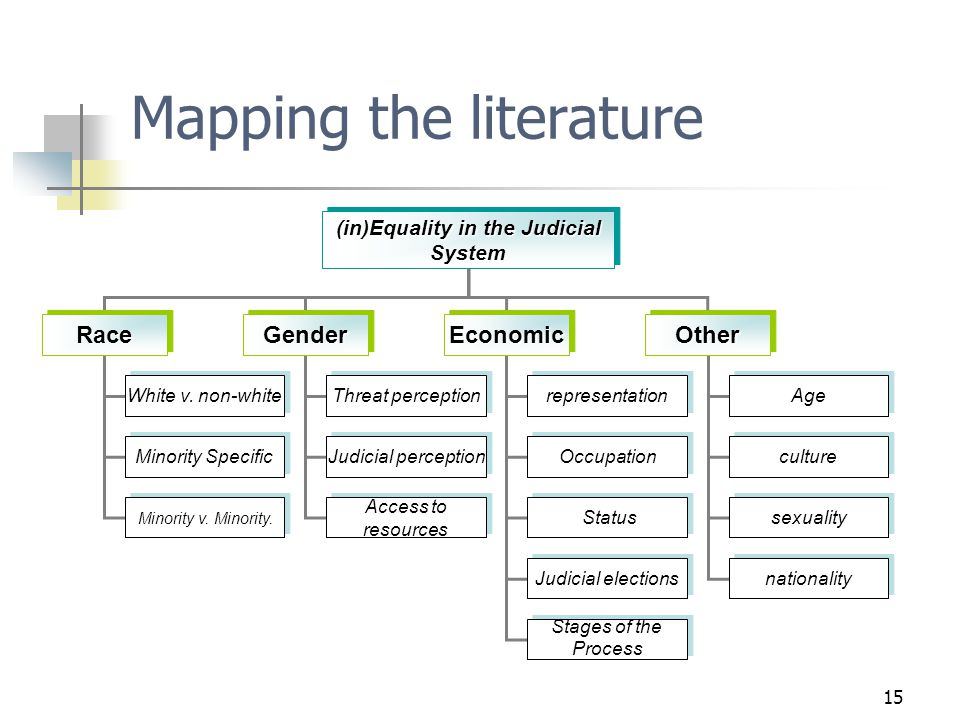 15 Mapping the literature (in)Equality in the Judicial System RaceRaceGenderGenderEconomicEconomicOtherOther White v.