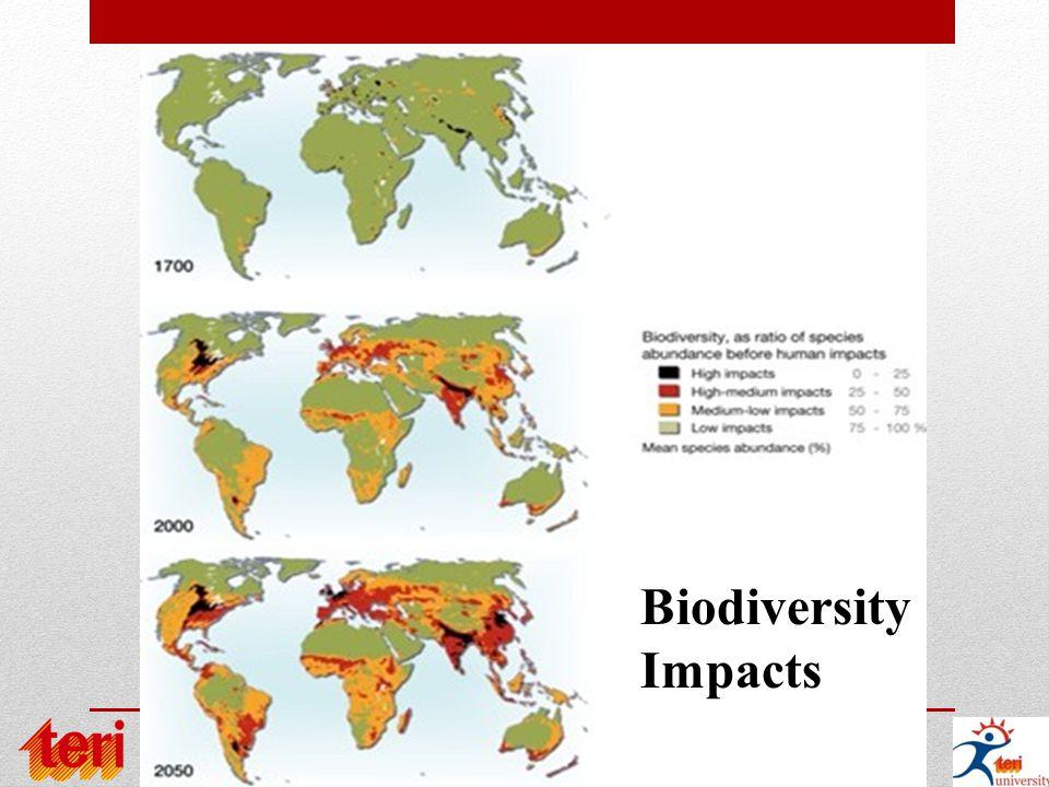 Biodiversity Impacts