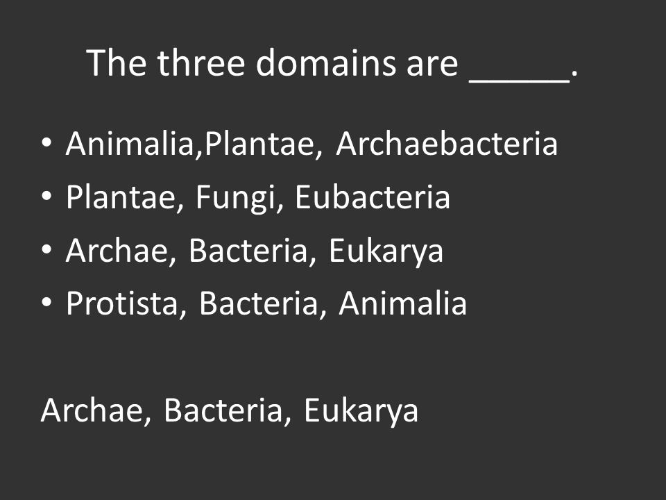 The three domains are _____.