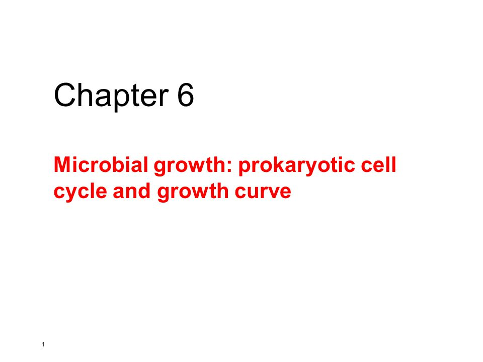 1 Microbial growth: prokaryotic cell cycle and growth curve Chapter 6