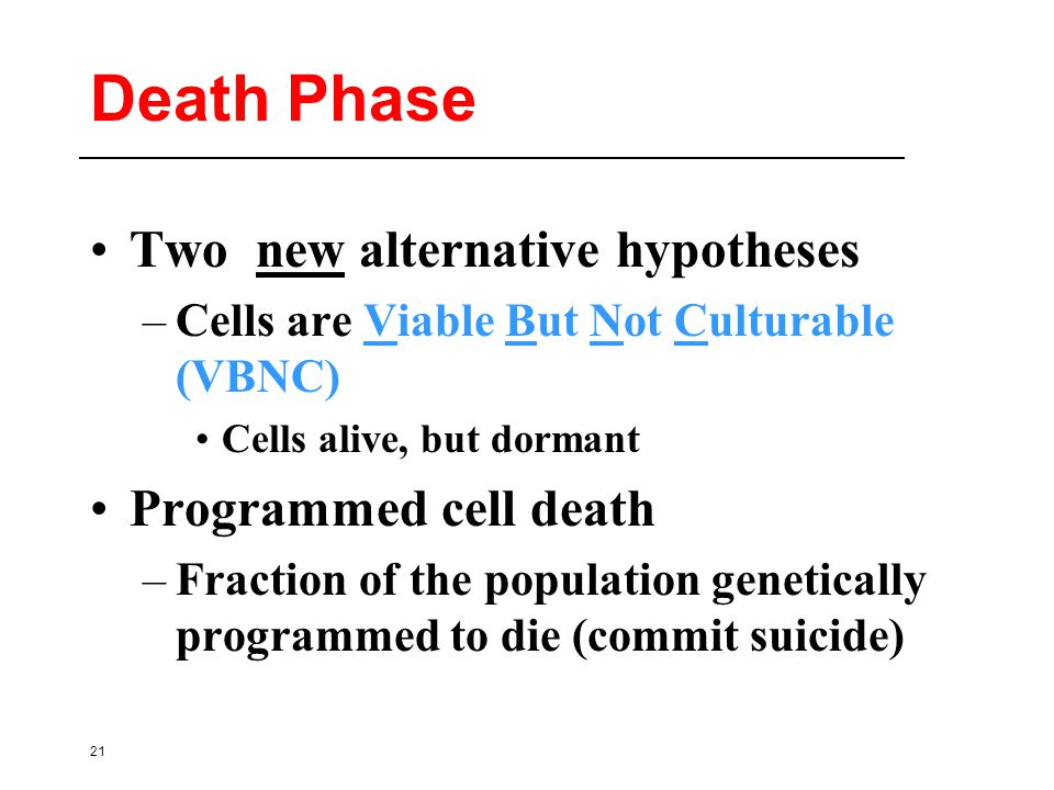 21 Death Phase Two new alternative hypotheses –Cells are Viable But Not Culturable (VBNC) Cells alive, but dormant Programmed cell death –Fraction of the population genetically programmed to die (commit suicide)
