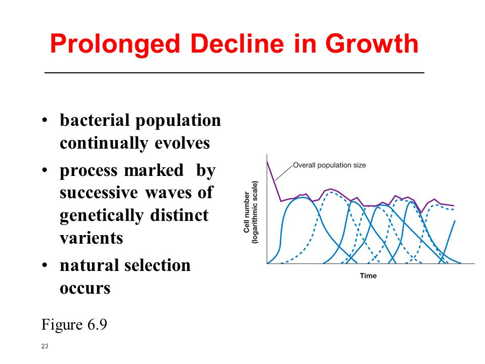 23 Prolonged Decline in Growth bacterial population continually evolves process marked by successive waves of genetically distinct varients natural selection occurs Figure 6.9