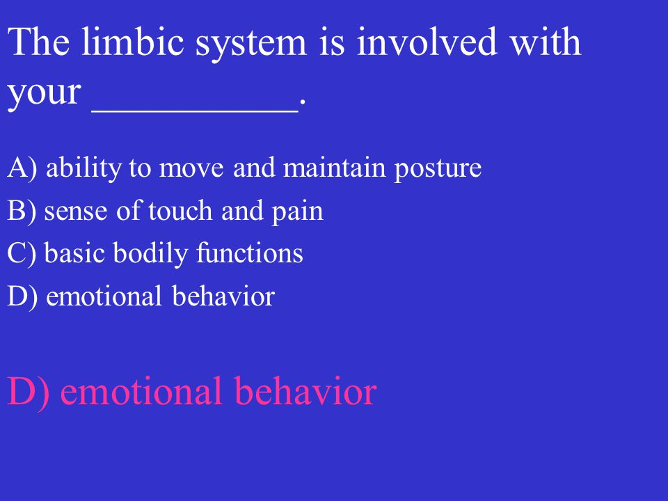 The limbic system is involved with your __________. A) ability to move and maintain posture B) sense of touch and pain C) basic bodily functions D) em