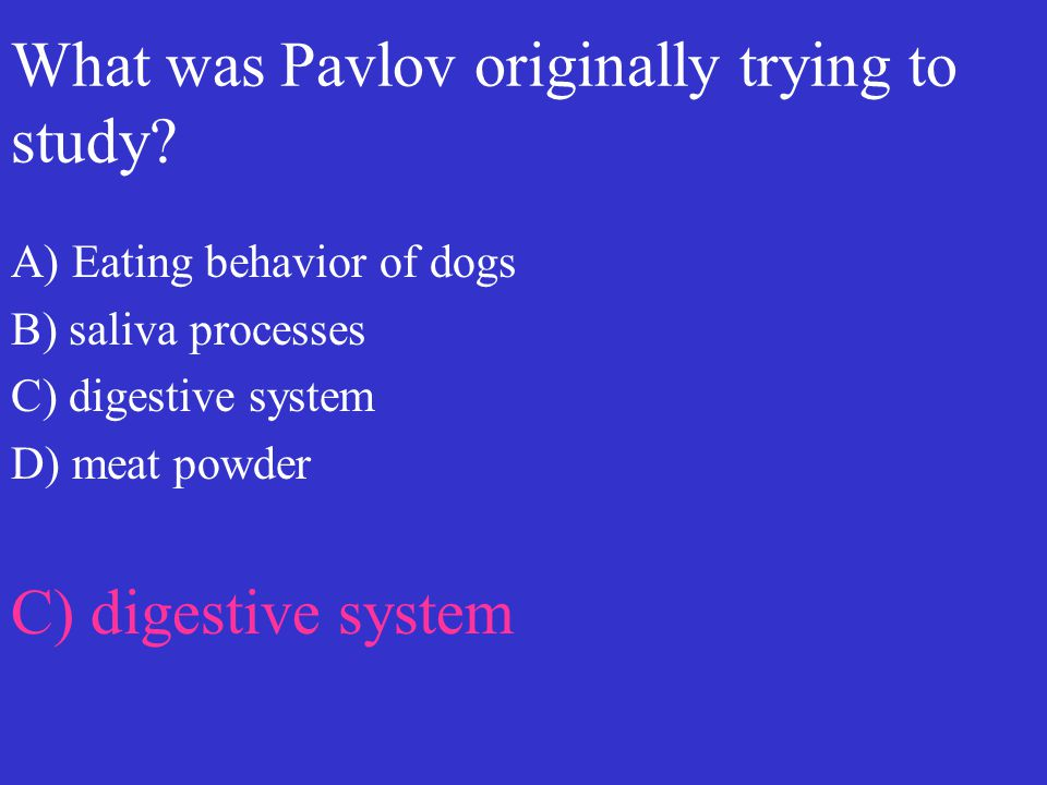 What was Pavlov originally trying to study? A) Eating behavior of dogs B) saliva processes C) digestive system D) meat powder C) digestive system