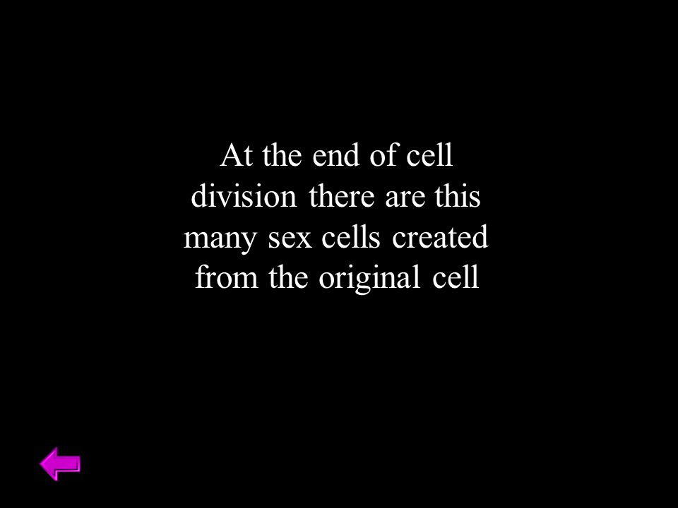 At the end of cell division there are this many sex cells created from the original cell