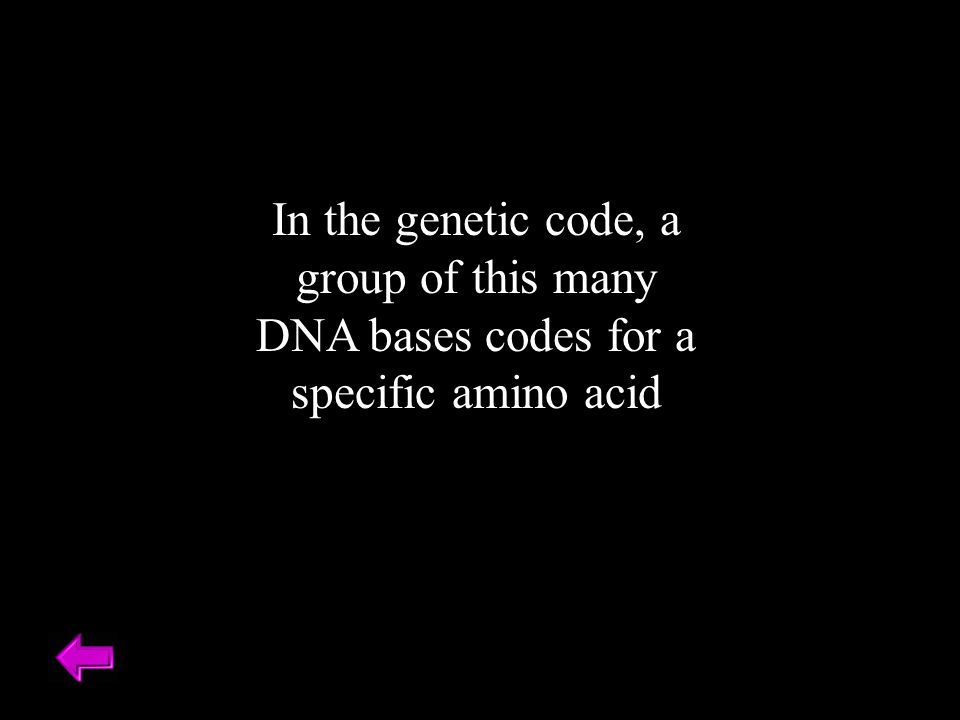 In the genetic code, a group of this many DNA bases codes for a specific amino acid