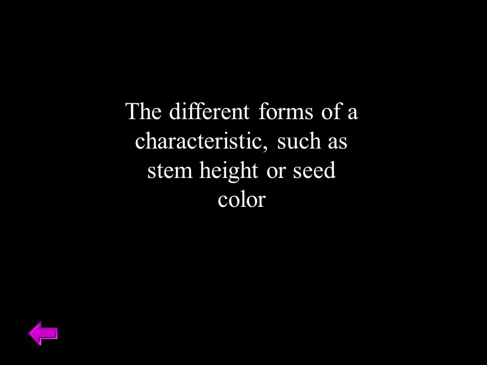 The different forms of a characteristic, such as stem height or seed color