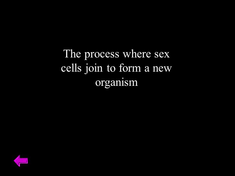 The process where sex cells join to form a new organism