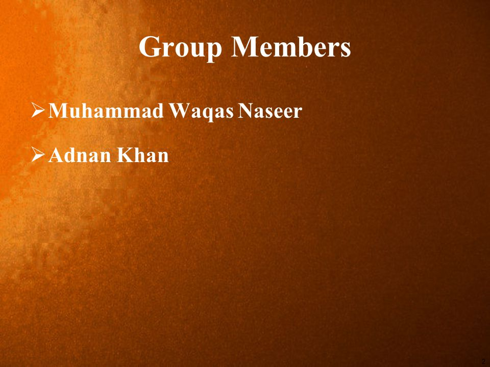 2 Group Members  Muhammad Waqas Naseer  Adnan Khan
