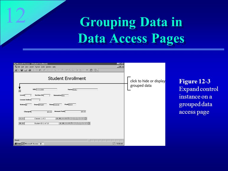 12 Grouping Data in Data Access Pages Figure 12-3 Expand control instance on a grouped data access page