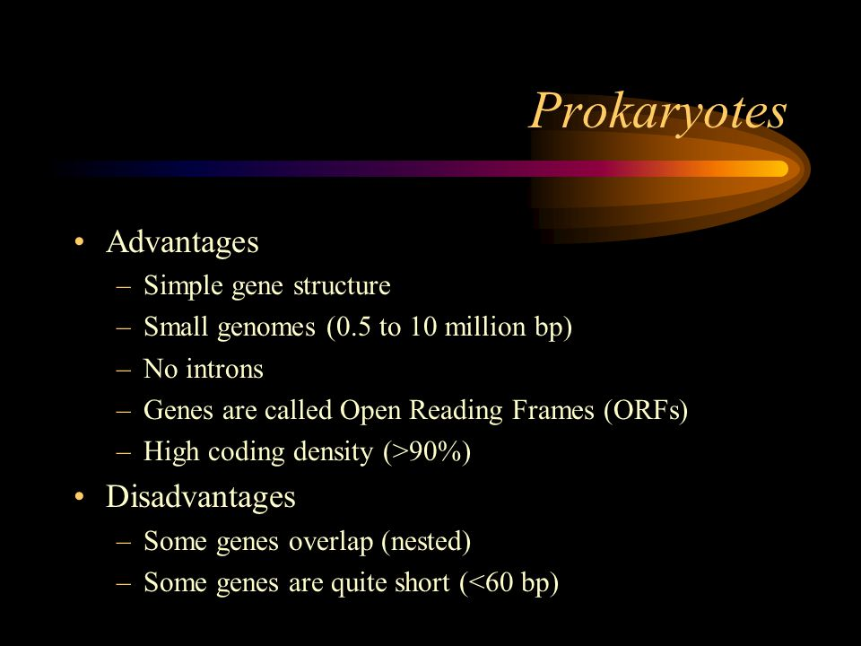 Prokaryotes Advantages –Simple gene structure –Small genomes (0.5 to 10 million bp) –No introns –Genes are called Open Reading Frames (ORFs) –High coding density (>90%) Disadvantages –Some genes overlap (nested) –Some genes are quite short (<60 bp)