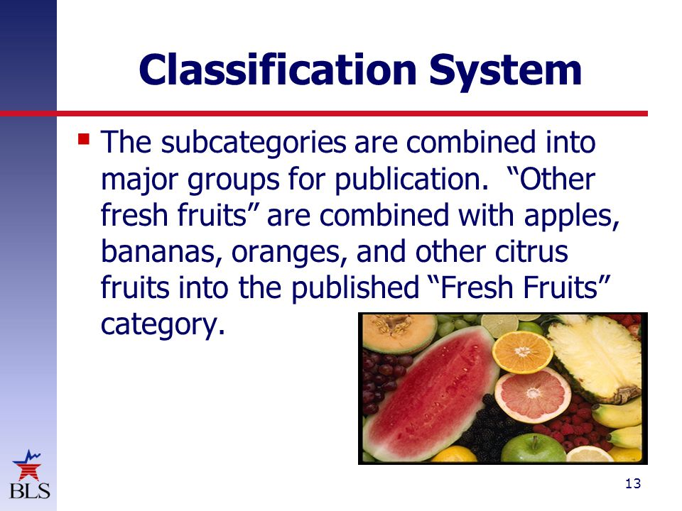 13 Classification System  The subcategories are combined into major groups for publication.