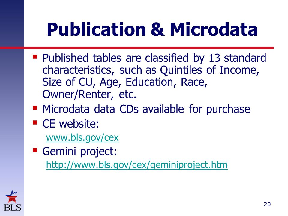 20 Publication & Microdata  Published tables are classified by 13 standard characteristics, such as Quintiles of Income, Size of CU, Age, Education, Race, Owner/Renter, etc.