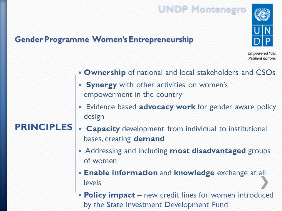 Ownership of national and local stakeholders and CSOs Synergy with other activities on women's empowerment in the country Evidence based advocacy work for gender aware policy design Capacity development from individual to institutional bases, creating demand Addressing and including most disadvantaged groups of women Enable information and knowledge exchange at all levels Policy impact – new credit lines for women introduced by the State Investment Development Fund UNDP Montenegro Gender Programme Women's Entrepreneurship PRINCIPLES